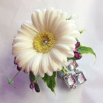 add ons for your floral gift Oasis Fleet Hampshire