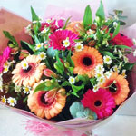 summer flower collection from Oasis Florist